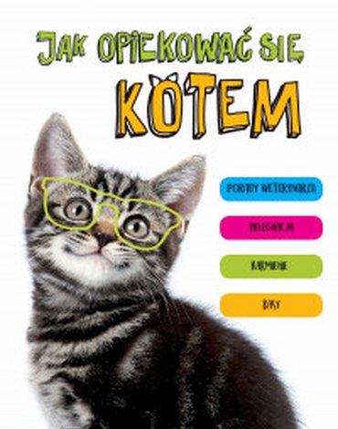 Zielona Sowa - Jak opiekować się kotem