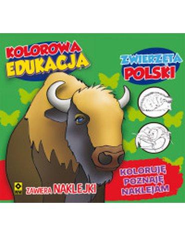 RM - Kolorowa edukacja. Zwierzęta Polski