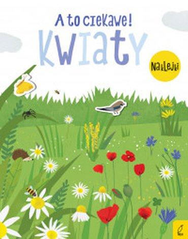 Wilga / GW Foksal - A to ciekawe! Kwiaty