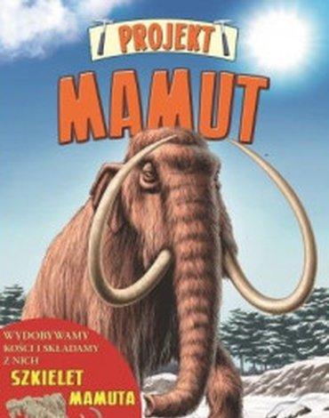 Wydawnictwo Debit - Projekt Mamut