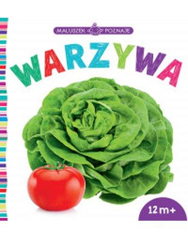 Wilga / GW Foksal - Maluszek poznaje. Warzywa