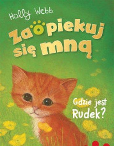 Zielona Sowa - Zaopiekuj się mną. Gdzie jest Rudek?