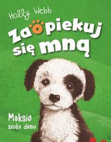 Zielona Sowa - Maksio szuka domu