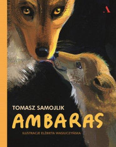 Agora - Ambaras