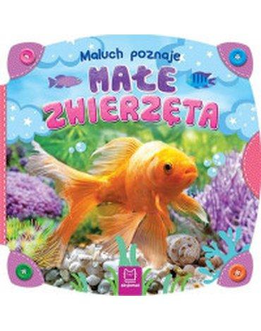 Aksjomat - Maluch poznaje małe zwierzęta