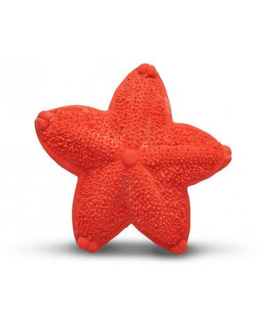 Lanco gryzak Rozgwiazda