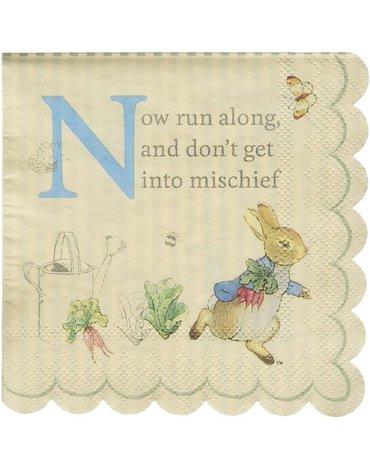 Meri Meri - Małe serwetki Peter Rabbit & Friends