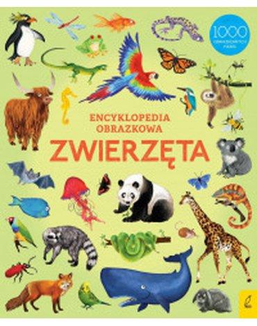 Wilga / GW Foksal - Encyklopedia obrazkowa. Zwierzęta