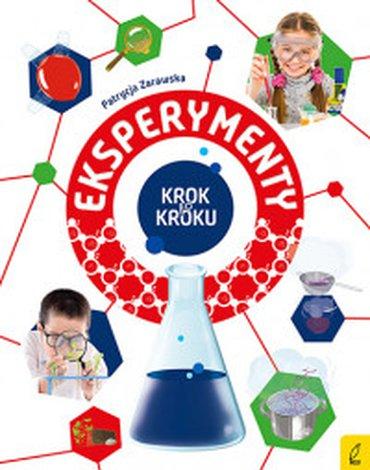 Wilga / GW Foksal - Eksperymenty. Krok po kroku
