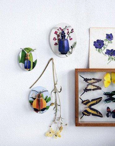 Kolekcja Owadów, część 1, kolekcja Deco, Studio ROOF
