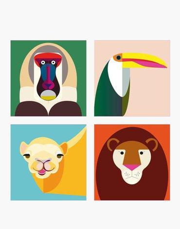 Małpka i Przyjaciele, Magnesy, Studio ROOF