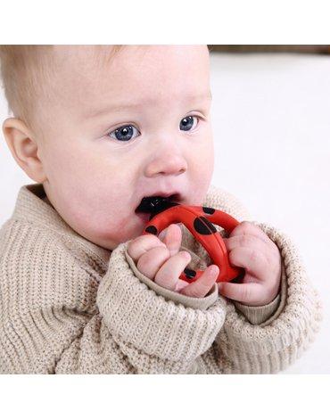 Mombella Szczoteczka Treningowa Biedronka Dori 3-8 miesięcy