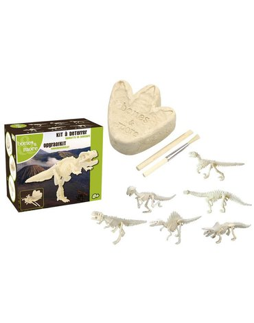 Geo Kids/Navir/DAM - Bones&More, Duży szkielet dinozaura - wykopalisko odcisk łapy