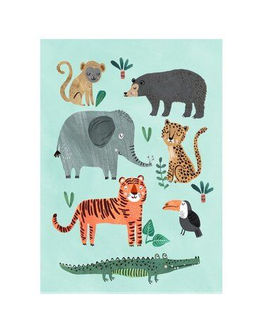 Petit Monkey - Poster Wild Animals 70 x 50 cm