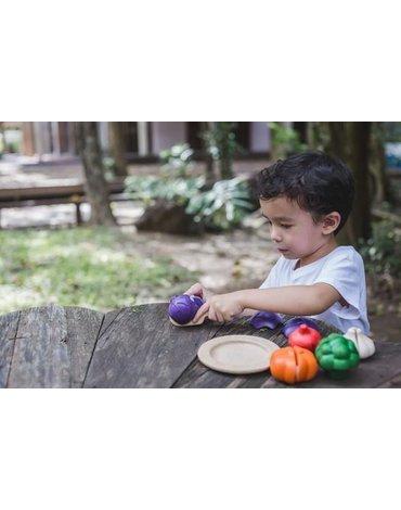 Zestaw warzyw w 5 kolorach, Plan Toys